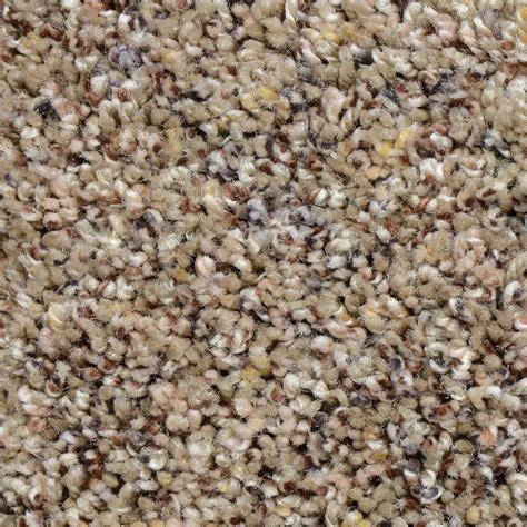 home decorators carpet home decorators collection carpet sle powder springs