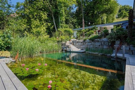Klares Wasser Im Teich 1420 by Klares Wasser Im Teich Das M 252 Ssen Sie Daf 252 R Tun