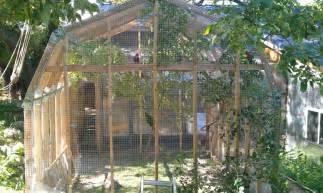 backyard aviary summertime outdoor aviary help parrot forum parrot