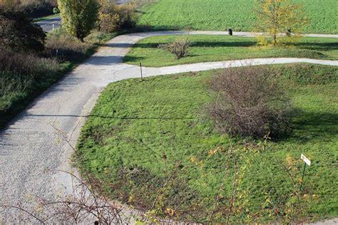 Bungsplatz Auto by Auto Und Motorrad Verkehrs 252 Bungsplatz In Worms