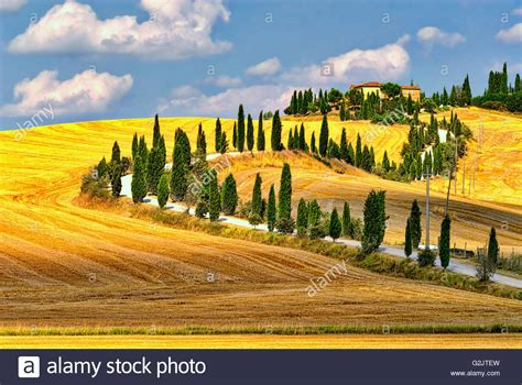 country landscape  siena tuscany italy  summer