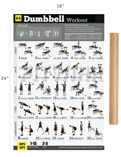 fitwirr dumbbell workout poster 19x27 dumbbell exercises