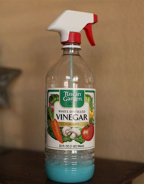 vinegar bathtub cleaner best bathroom cleaner ever clean it up pinterest