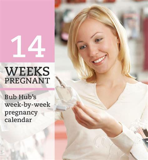 Pregnancy Calendar Week By Week 14 Weeks Week By Week Pregnancy Calendar Bub Hub