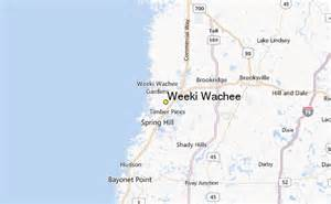 weeki wachee weather station record historical weather