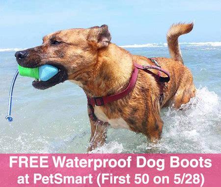petsmart boots free waterproof boots at petsmart 50 on 5 28