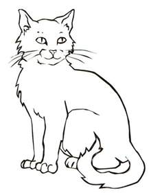realistic cat free coloring pages art coloring pages