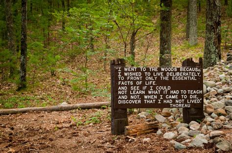 walden pond book quotes walden pond thoreau quotes quotesgram