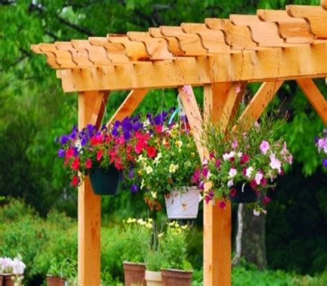 pergola rafter end designs outdoor goods