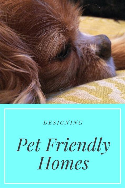 pet friendly interior design advice   lilu