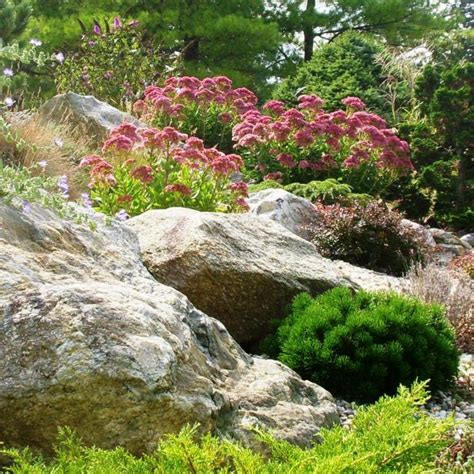 Rock Home Gardens Low Water Rock Gardens Hgtv