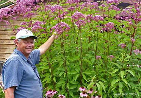 bill s butterfly and bird garden