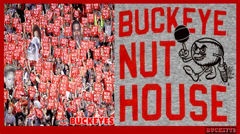 the nut house the buckeye nut house ohio state university basketball