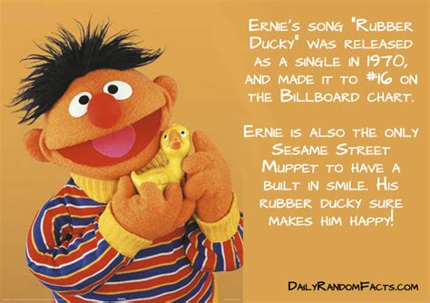 Bird Amazing Rubber St 11 facts about sesame
