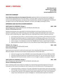 resume exles for executive summary with experience and