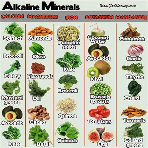 fruits n vegetables rich in iron diet infographic alkaline minerals and foods