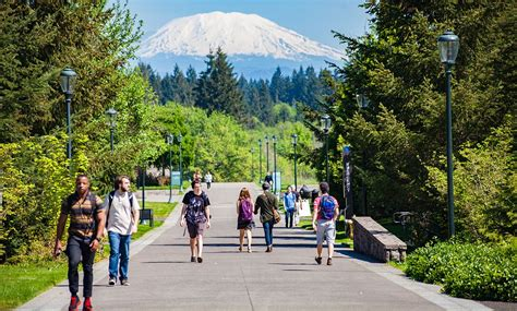 Wsu Search Washington State Vancouver