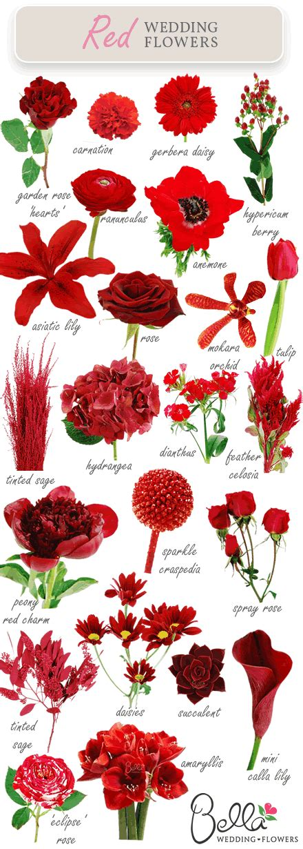 types of reds wedding flowers did you there were so many