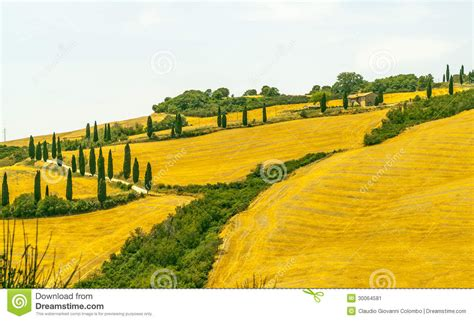 Country Farm House Plans landscape in val d orcia tuscany stock image image