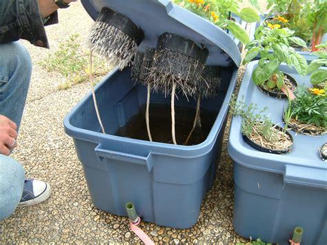 create  diy hydroponic system  homestead