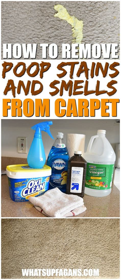 how to get diarrhea out of carpet how to get human vomit smell out of carpet best accessories home 2017