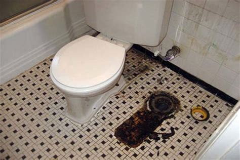 sewer smell in basement bathroom how to repair tips to remove sewer smell in bathroom