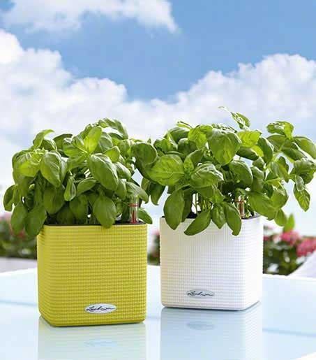 vasi da terrazzo in resina i migliori vasi per il tuo giardino in resina o plastica