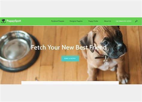 puppy spot scam reportscam puppyspot 3 complaints