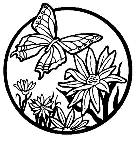 free coloring pictures of flowers and butterflies butterfly coloring pages coloring