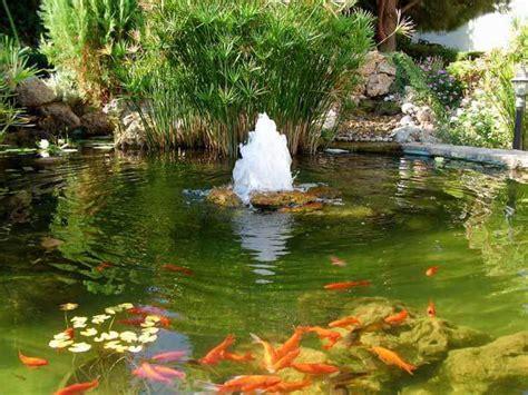 Koi Garden by Koi Fish Landscaping Tips Koi Pond Aeration Needed For