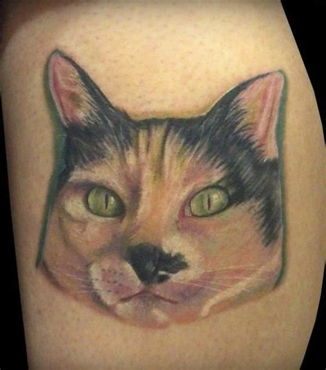 cat eye tattoo cat paw tattoos cats tattoos