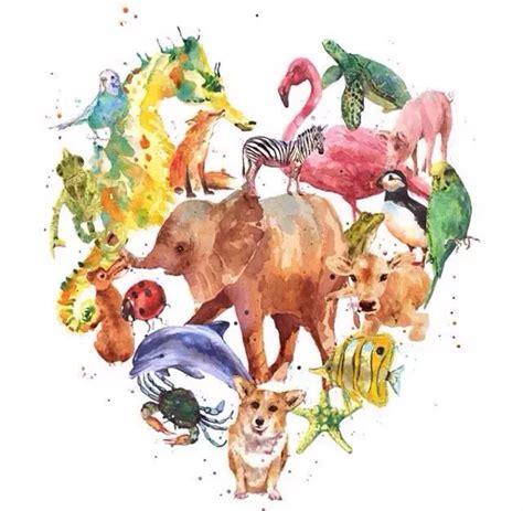 Animal World 4 4th october world an箘mal day ipekseyhanpoyrazkarayel