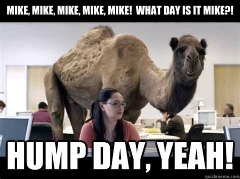 Mike Meme - mike mike mike mike mike what day is it mike hump day yeah hump day camel quickmeme