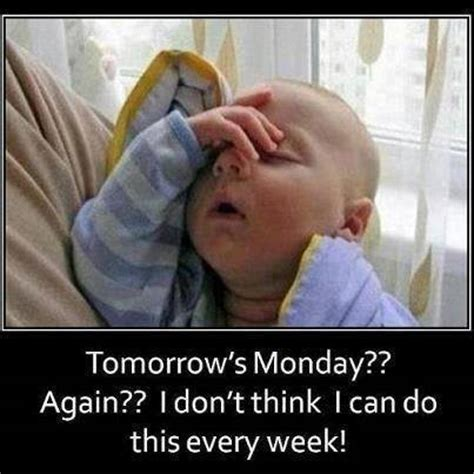 Monday Funny Memes - no work tomorrow meme