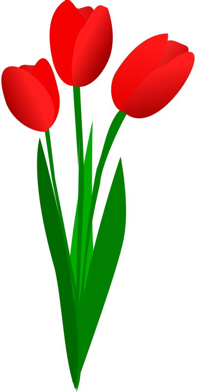Free Tulip Clipart free to use domain tulip clip