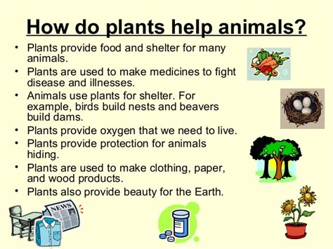 habitats for plants and animals