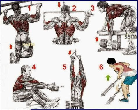 fitness bodybuilding this a simple exercises for the