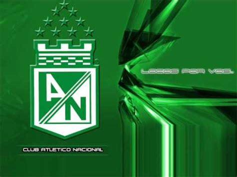 imagenes sarcasticas del atletico nacional verde no dejo de amarte canciones atletico nacional