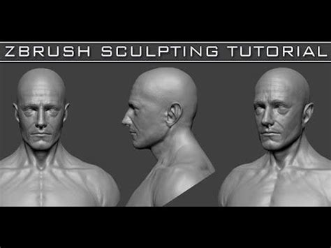 zbrush sculpting tutorial for beginners 1 head sculpting with dynamesh in zbrush tutorial series