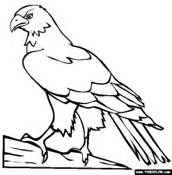 hawk coloring pages perched hawk coloring page free perched hawk