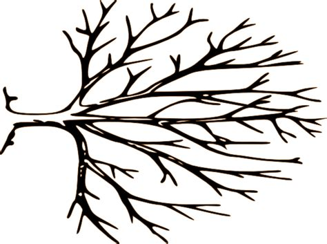 Bare Tree Template bare tree template cliparts co
