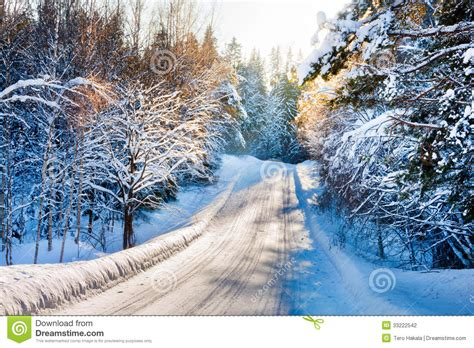 imagenes del invierno small country road in winter with sunshine on snowy trees