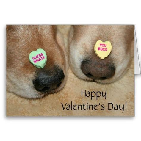 San Diego Gift Card Ideas - 100 best funny valentine s cards images on pinterest funny valentines cards