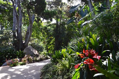self realization fellowship meditation gardens