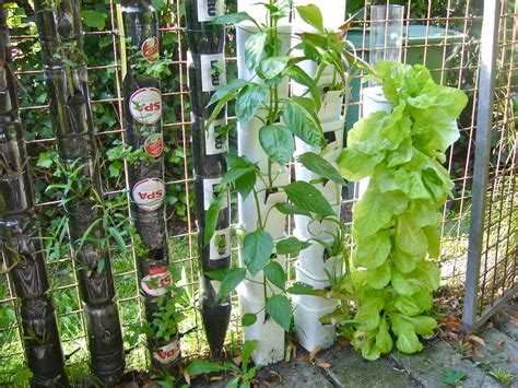 30 Herb Garden Ideas To Spice Up Your Life Garden Lovers How To Grow A Vertical Vegetable Garden