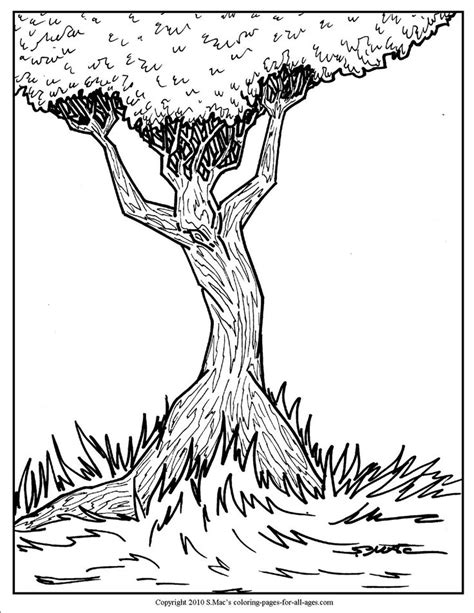 S Mac Coloring Pages by 46 Best Coloring Therapy Images On
