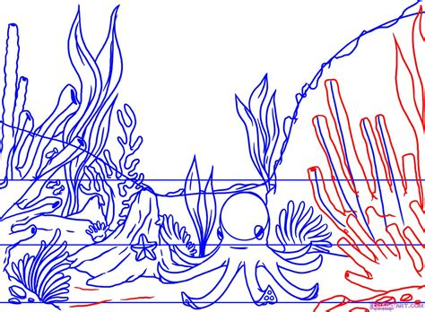 how to draw a coral reef step by step other landmarks
