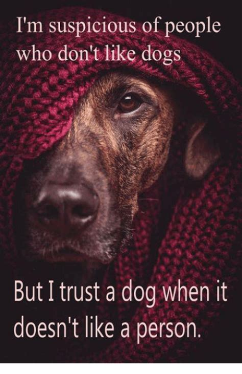 i dont like dogs i m suspicious of who don t like dogs but i trust a when it doesn t like a