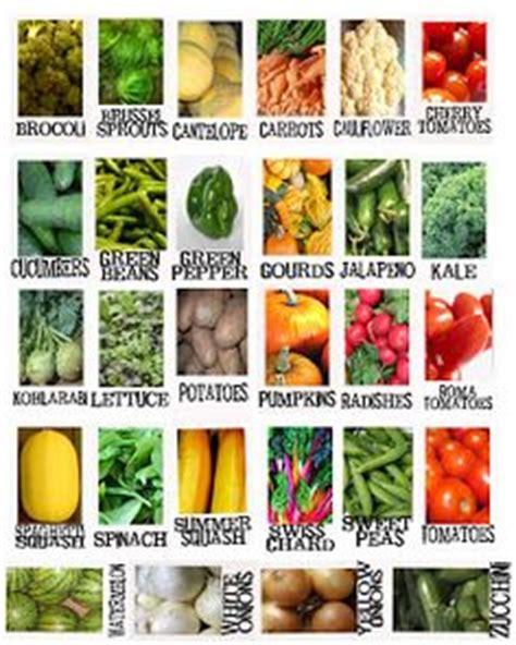 vegetable labels for garden garden labels on plant markers garden markers