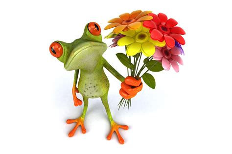 Flowe Funy frog with flower 3d picture